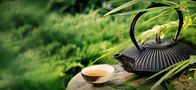 gruener-tee-zubereitung-kanne
